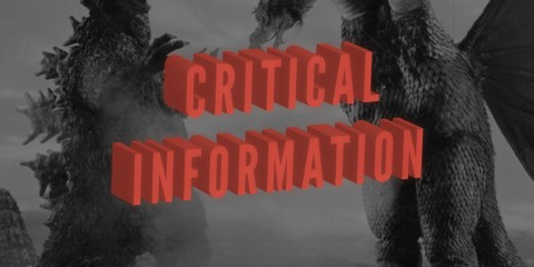 column-critical-information